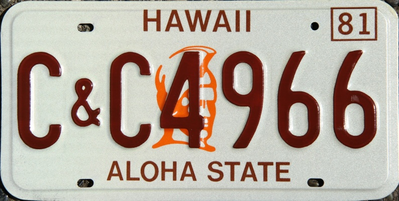 Hawaii 1991 License Plate Personalized Custom Auto Bike Motorcycle Moped Key Tag